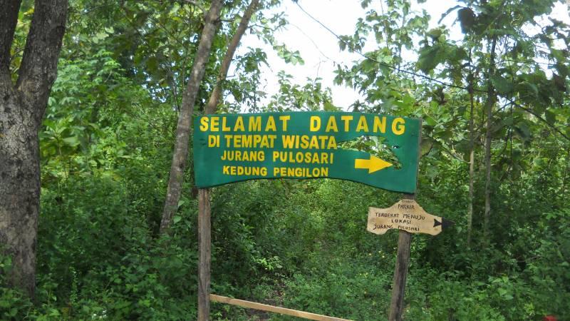Merasakan Kesegaran Air Terjun Di Curug Pulosari Jamelatour 081578781230